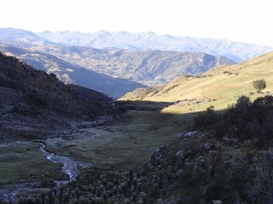 INVESTMENT IN IRON ORE PROJECT, CUSCO REGION, PERU