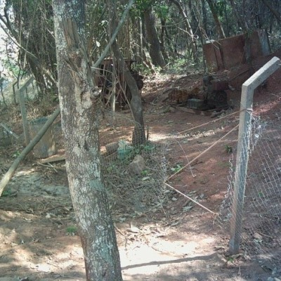 Poorly maintained security fence at site